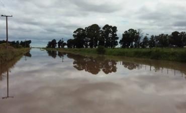 Serios daños por fuertes tormentas en Monte de los Gauchos y zona rural.
