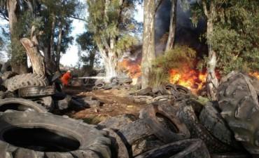 Incendio de gran magnitud en el basural local