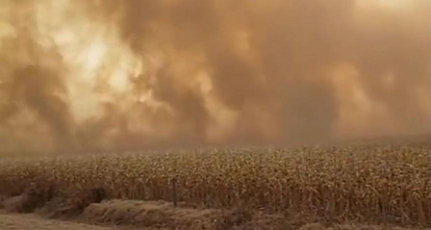 Importantes daños por incendios en el comienzo de agosto
